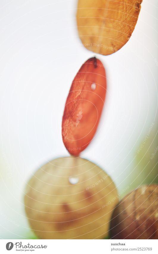 klirrdings Windspiel durchsichtig durchscheinend transparent Geräusch zum aufhängen Kette Licht rund ruhig Muschelschale Capiz Girlande Klang klingen