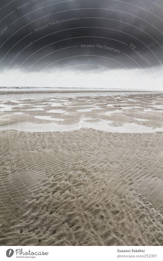 Spiekeroog | weit weit weg Himmel Natur Strand Wolken kalt dunkel Küste See Wellen Klima Nordsee Gezeiten Ebbe Schlick Nordseeinsel