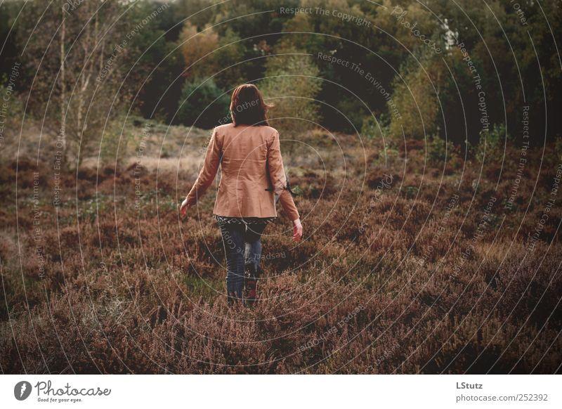 daughter Mensch Natur Jugendliche grün Tier Erwachsene gelb Herbst feminin Leben Umwelt Freiheit Bewegung braun laufen natürlich