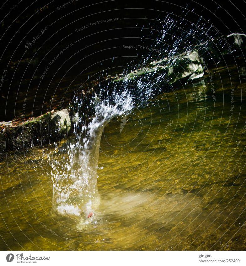 Platsch!!! [CHAMANSÜLZ 2011] Natur Wasser werfen spritzen platschen Wasserfontäne Fluss Bach flach Stein Spielen Freude Unsinn Farbfoto Gedeckte Farben