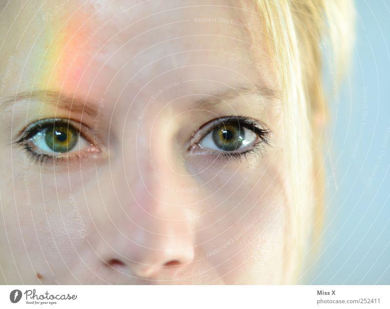 rainbow eye Mensch Jugendliche schön Gesicht Auge feminin Erwachsene 18-30 Jahre Regenbogen Regenbogenhaut regenbogenfarben Spektralfarbe