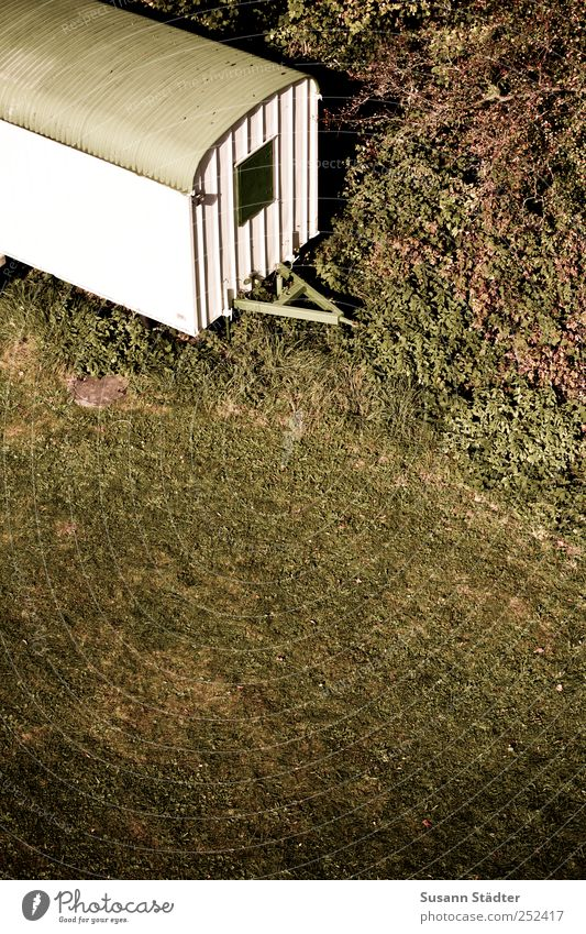 [CHAMANSÜLZ 2011] Wohnzimmer grün Baum Pflanze Wiese Herbst Fenster Landschaft oben Gras Park Sträucher Baustelle außergewöhnlich Aussicht Bauarbeiter Wagen