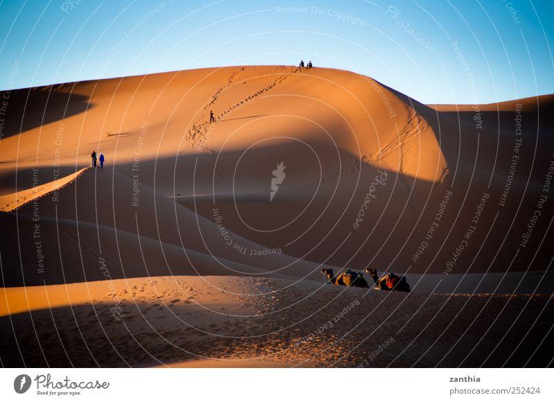 Erg Chebbi Natur Ferien & Urlaub & Reisen ruhig Einsamkeit Ferne Umwelt Wege & Pfade Horizont Abenteuer Tourismus Klima Wüste Idylle Düne Schönes Wetter Risiko
