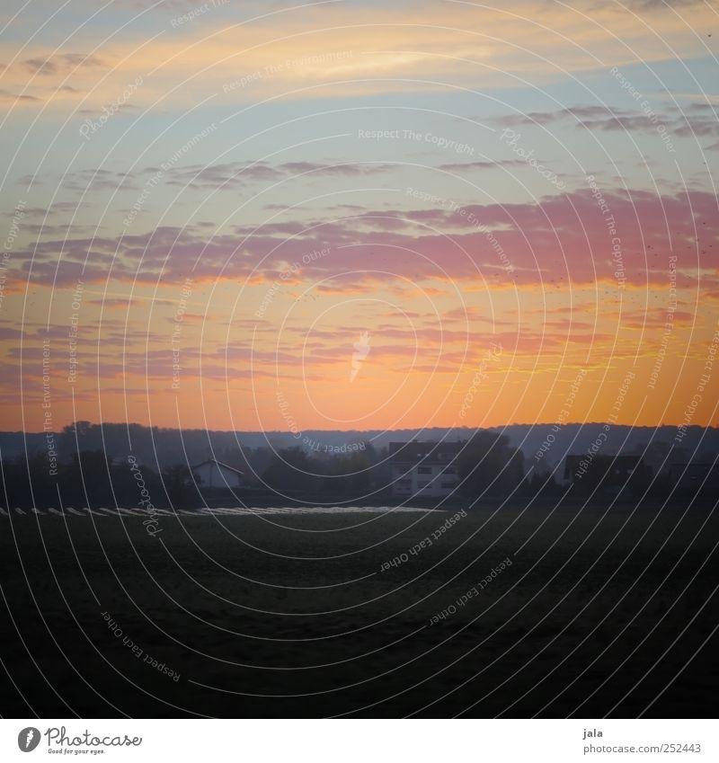 sonne auf. Umwelt Natur Landschaft Himmel Sonnenaufgang Sonnenuntergang Herbst Pflanze Baum Feld Dorf Haus natürlich Farbfoto Außenaufnahme Menschenleer Morgen