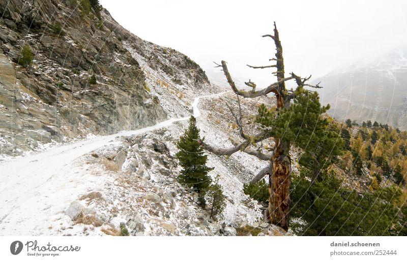 Wanderweg Natur Baum Ferien & Urlaub & Reisen Schnee Herbst Umwelt Berge u. Gebirge Landschaft Wege & Pfade Eis wandern Zukunft Frost Ziel Alpen Schweiz