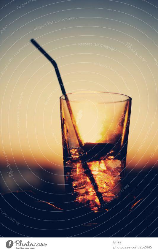 Cool As Ice Getränk Limonade Alkohol Longdrink Cocktail Glas Ferien & Urlaub & Reisen Trinkhalm Eiswürfel genießen Feierabend Nachtleben Sommer Sonnenuntergang