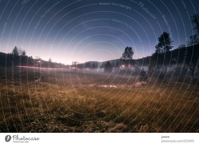 Metapher Himmel Natur blau grün Baum ruhig schwarz Wald Erholung Wiese Herbst Landschaft braun Nebel Dorf Schönes Wetter