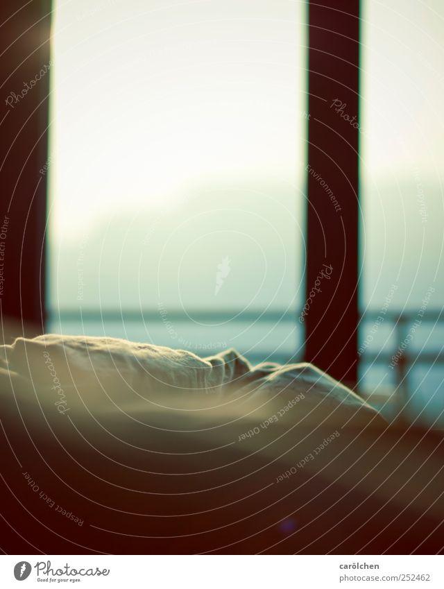 its a new day... Wohnung einfach trösten Vorsicht Gelassenheit Bett Bettwäsche Fenster Morgendämmerung Sonnenlicht gemütlich ruhig Erholung Pause Farbfoto