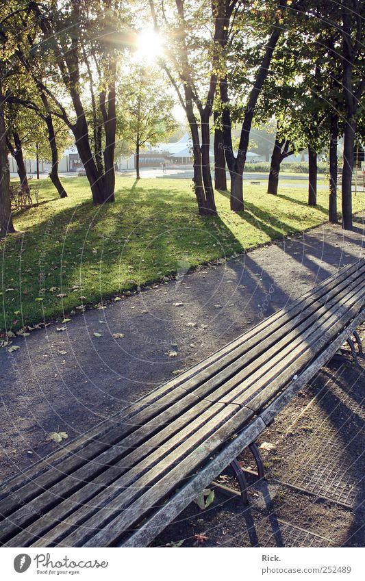 .taking a rest ruhig Einsamkeit Erholung Herbst Holz Wege & Pfade Sand Park hell Zufriedenheit sitzen Gelassenheit Stahl genießen Meditation Wohlgefühl
