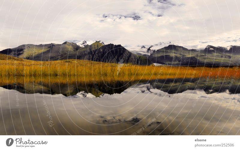 G L A C I E R Natur Ferne Erholung Freiheit Berge u. Gebirge Landschaft Gras See Eis Felsen wandern Abenteuer Wassertropfen Tourismus Sträucher Hügel