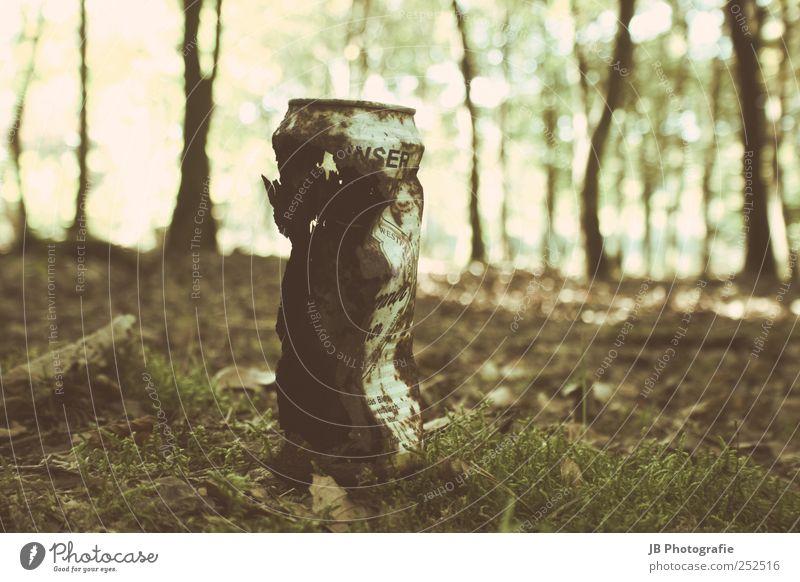 Rost aus der Dose alt Wald gehen dreckig retro verfallen altehrwürdig verwittert gebraucht Sepia veraltet Froschperspektive Alterserscheinung
