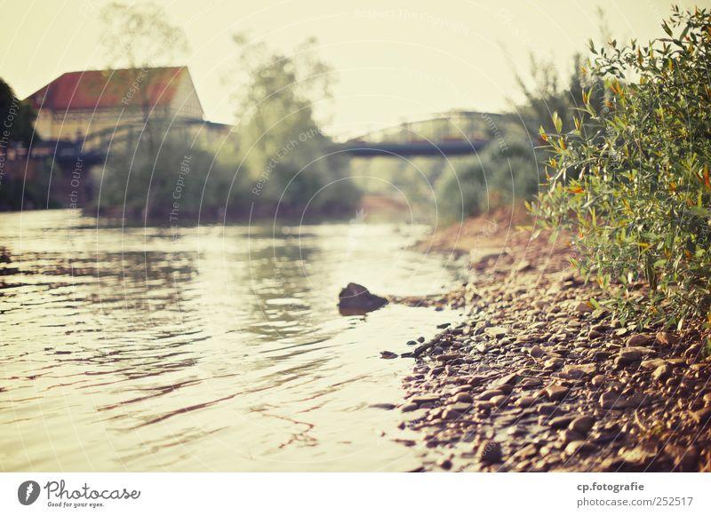 Flußufer Natur Urelemente Wasser Sommer Herbst Schönes Wetter Pflanze Sträucher Grünpflanze Flussufer Kleinstadt Menschenleer Haus Brücke Stein Tag Licht