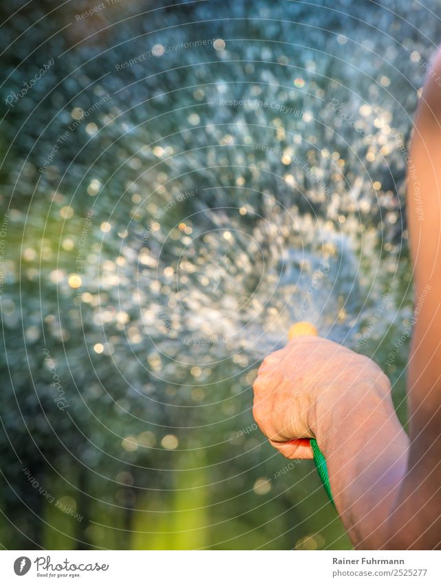 eine Frau wässert den Garten Mensch Natur Erwachsene Wärme Umwelt feminin Arbeit & Erwerbstätigkeit Freizeit & Hobby Schönes Wetter Dorf Stadtrand Dürre