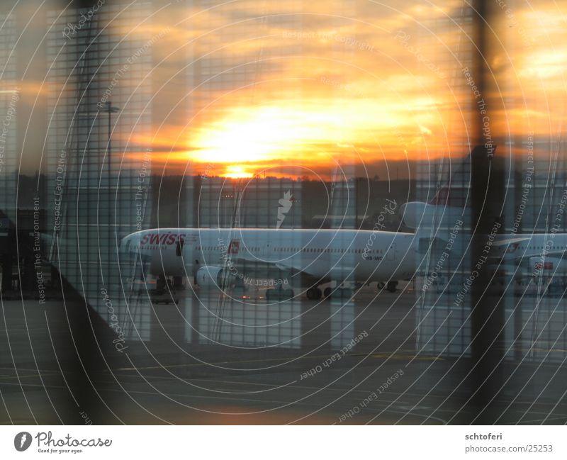 Abendflug Flugzeug Abendsonne Fernweh Flugplatz Ankunft Sonnenuntergang Europa Ferien & Urlaub & Reisen Swiss Flughafen Wege & Pfade Reisestimmung destination