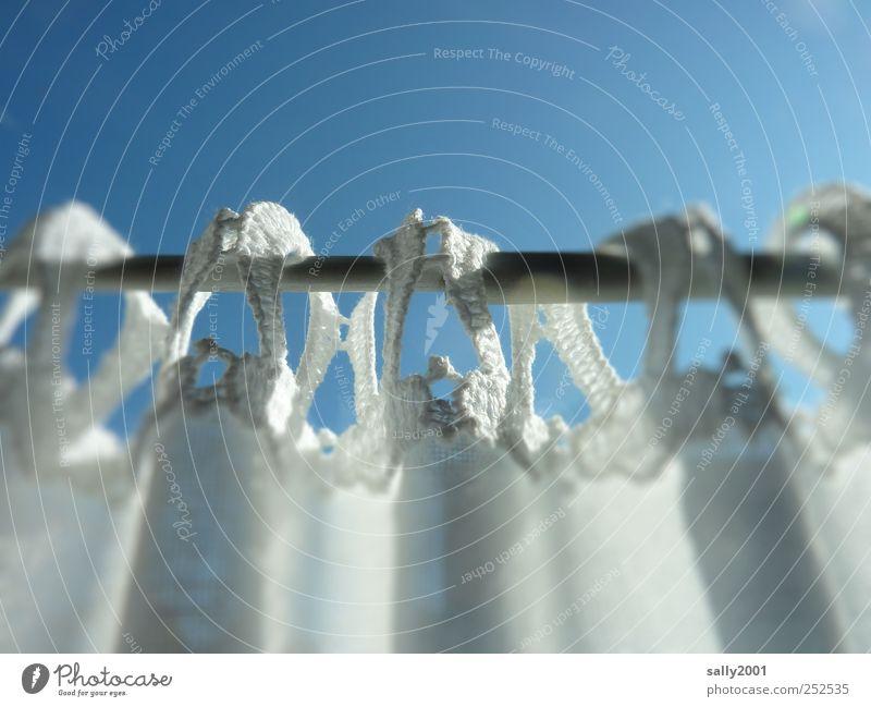 Hinter bayrischen Gardinen weiß schön Fenster Wohnung frisch ästhetisch Sicherheit Häusliches Leben Küche Dekoration & Verzierung Vorhang hängen Leichtigkeit Gardine