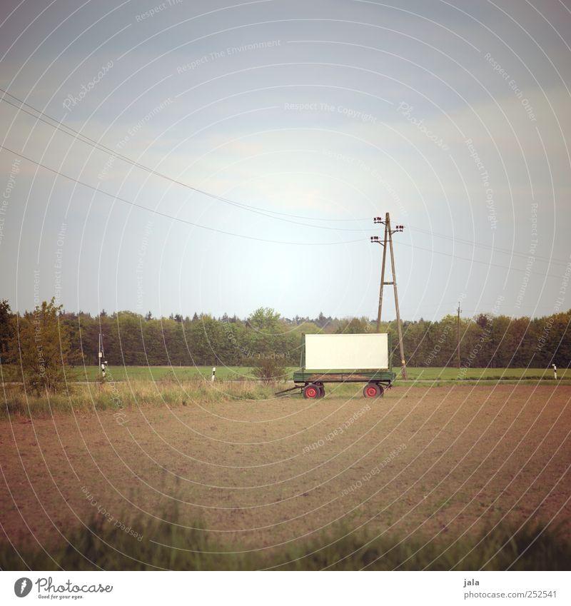 werbefläche Umwelt Natur Landschaft Himmel Pflanze Baum Gras Sträucher Feld Anhänger Schilder & Markierungen natürlich trist Strommast Farbfoto Außenaufnahme