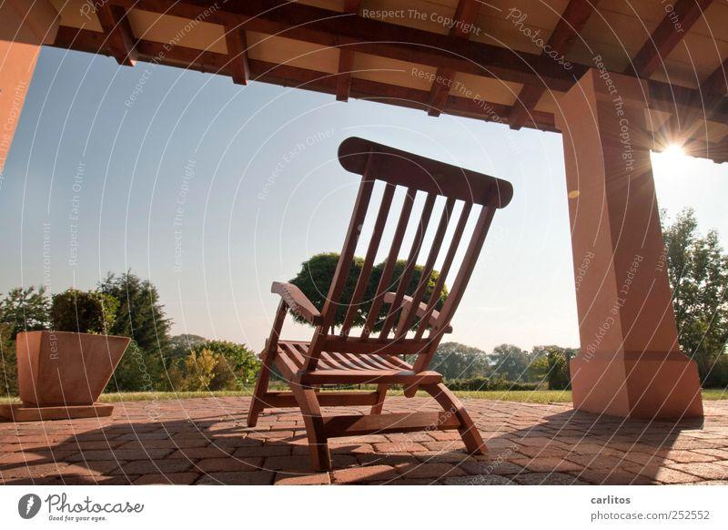 Wochenend und Sonnenschein Wolkenloser Himmel Sommer Schönes Wetter Sträucher Garten Erholung glänzend liegen träumen ästhetisch blau braun rot Zufriedenheit