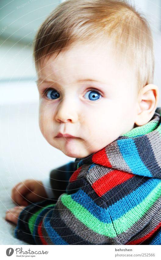 liebhaben Mensch Kind blau schön Gesicht Auge Haare & Frisuren Kopf träumen Zufriedenheit Kindheit Haut Baby Mund Nase niedlich