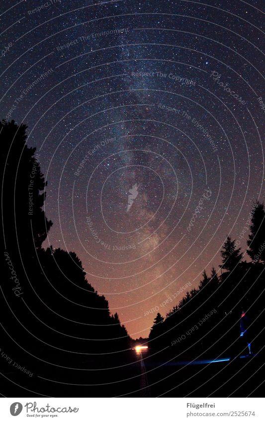 Nachtwanderung Mensch Himmel Baum Einsamkeit Wald dunkel Horizont Stern beobachten Weltall Tanne Galaxie Taschenlampe Milchstrasse