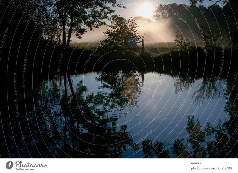 Still fließend Natur Pflanze Wasser Landschaft Baum ruhig Ferne Umwelt Herbst Wiese Horizont leuchten Luft glänzend Idylle Schönes Wetter