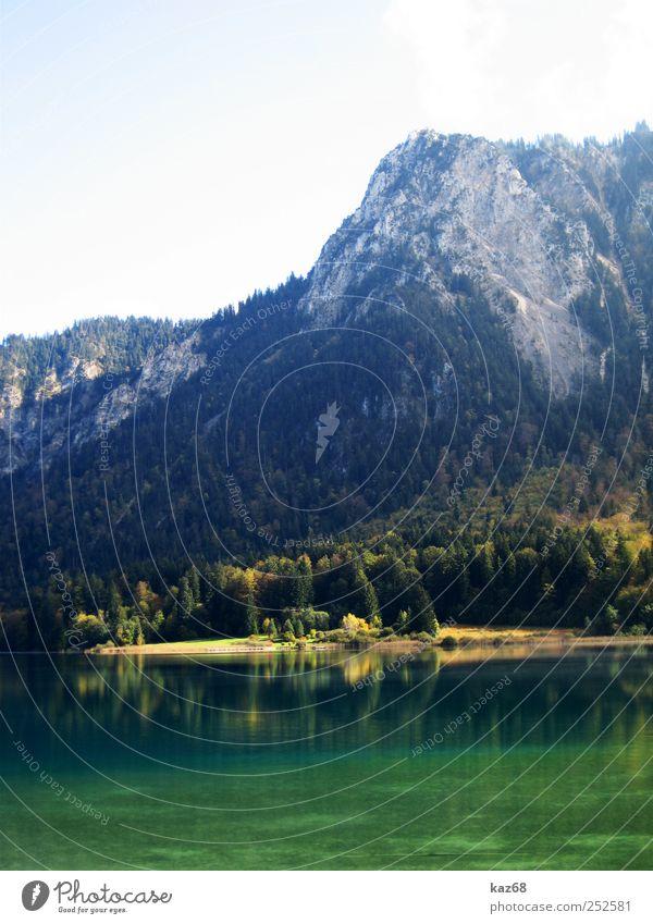 Alpsee wandern Umwelt Natur Landschaft Wasser Herbst Schönes Wetter Pflanze Baum Wald Felsen Alpen Berge u. Gebirge Gipfel Seeufer Schwimmen & Baden hoch