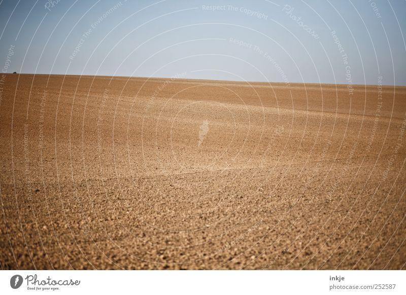 Wüste Wolfenbüttel blau Einsamkeit Ferne Herbst Landschaft Stimmung braun Horizont Feld Erde Ordnung natürlich leer trist Unendlichkeit Landwirtschaft