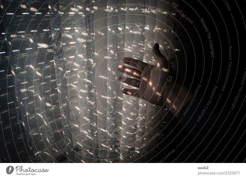 Lichtzerhacker Hand Finger Daumen Unterarm Fenster Jalousie Gardine Lichteinfall Lichtpunkt ruhig Farbfoto Gedeckte Farben Innenaufnahme Detailaufnahme