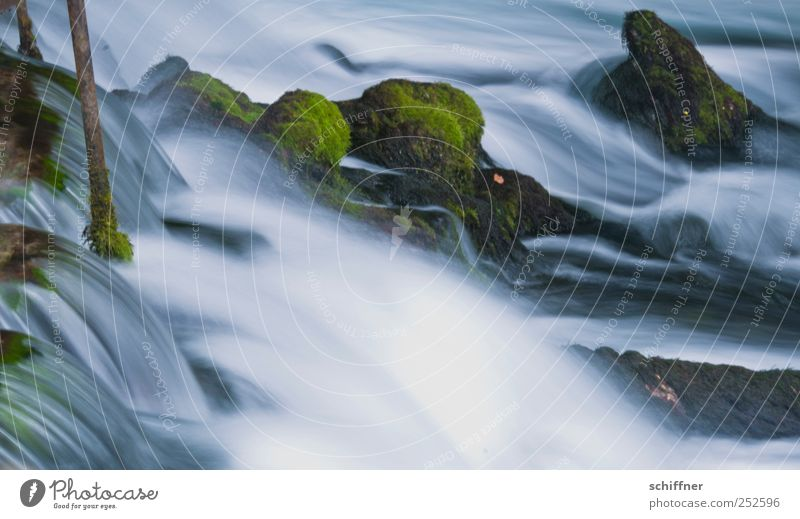 Alles im Fluss Natur Wasser ruhig Leben Zufriedenheit Felsen ästhetisch natürlich Urelemente Wellness Idylle Flussufer Moos Bach fließen