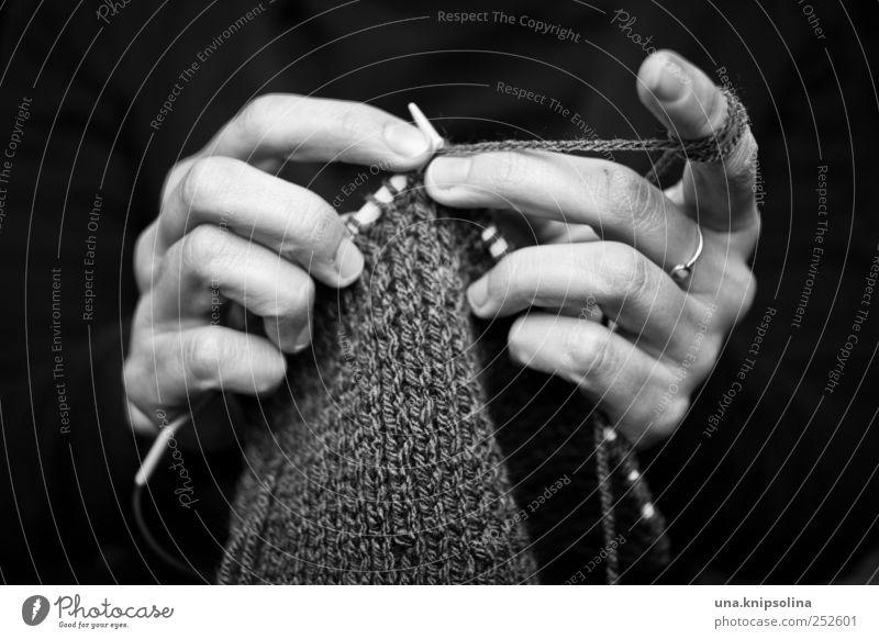 strickliesel Mensch Frau Hand Erwachsene feminin Bewegung Freizeit & Hobby authentisch Finger Kreativität festhalten Ring machen Wolle stricken Handarbeit