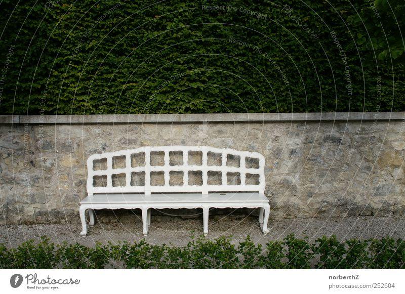 Bank mit Mauer und Hecke Natur Pflanze ruhig Tod Garten Stein Sträucher Schönes Wetter Skulptur