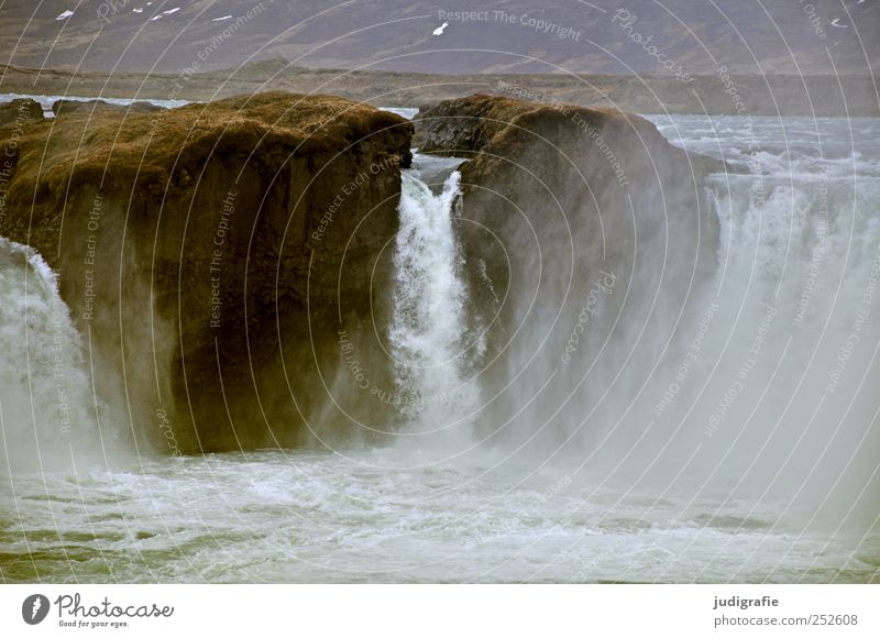 Island Umwelt Natur Landschaft Urelemente Wasser Klima Felsen Schlucht Fluss Wasserfall Godafoss gigantisch nass natürlich wild Stimmung Kraft gewaltig Gischt