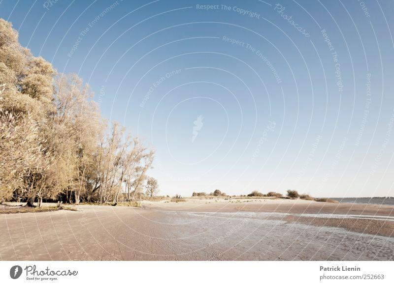 Blue October Natur blau Sonne Ferien & Urlaub & Reisen Strand Meer Ferne Freiheit Umwelt Landschaft Küste Stimmung Wetter Wellen Freizeit & Hobby Ausflug