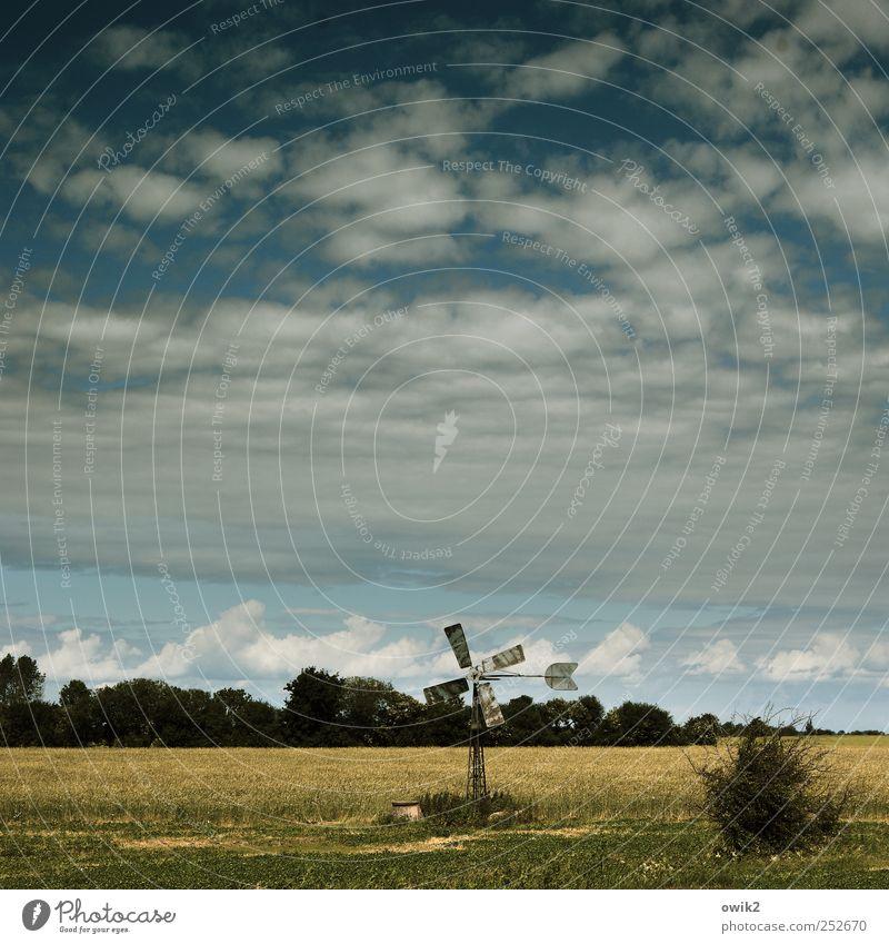 Nju Ennerdschi Himmel Natur blau grün Baum Pflanze Ferien & Urlaub & Reisen Wolken Wald Ferne gelb Umwelt Landschaft klein Horizont Wind