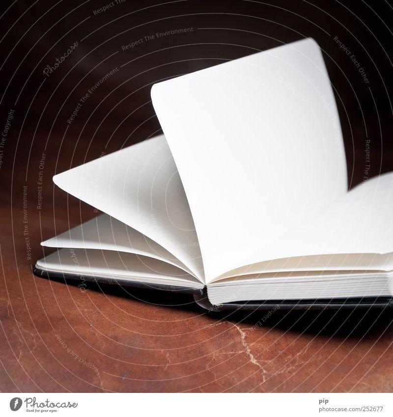 unbeschrieben weiß dunkel braun Buch offen Papier leer lesen Kalender Buchseite Leder Notizbuch Heft Tagebuch aufgeschlagen