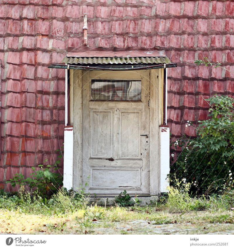 spooky neighborhood Sträucher Menschenleer Hütte Fassade Fenster Tür Dach Dachrinne Schornstein Eingangstür Holztür alt dunkel einfach Originalität trashig