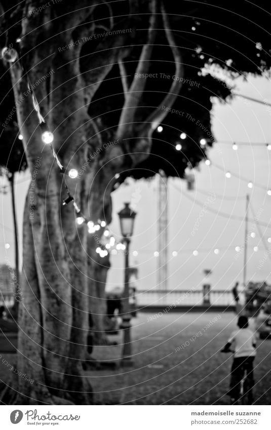 lights Mensch Kind Ferien & Urlaub & Reisen Sommer ruhig Einsamkeit dunkel Bewegung Stimmung Park Kindheit Freizeit & Hobby Feste & Feiern Fahrrad Platz fahren