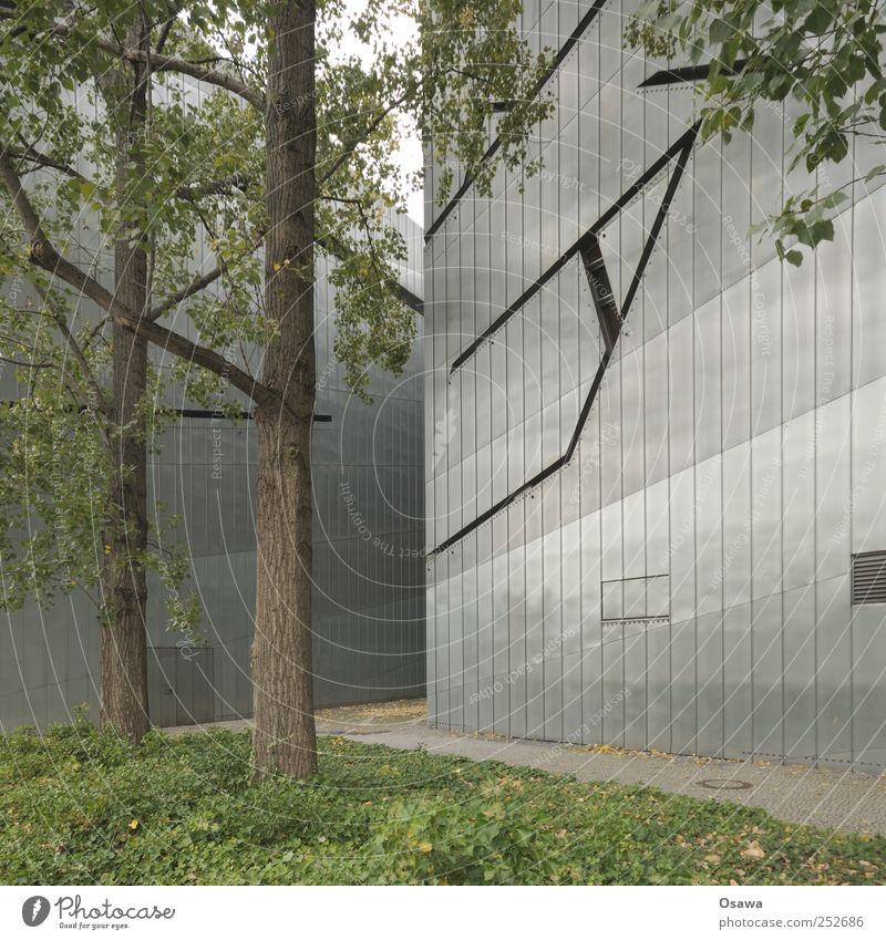 Jüdisches Museum 2 grün Baum Blatt Berlin Architektur grau Gebäude Fassade modern Bauwerk Denkmal Vergangenheit Baumstamm Sightseeing