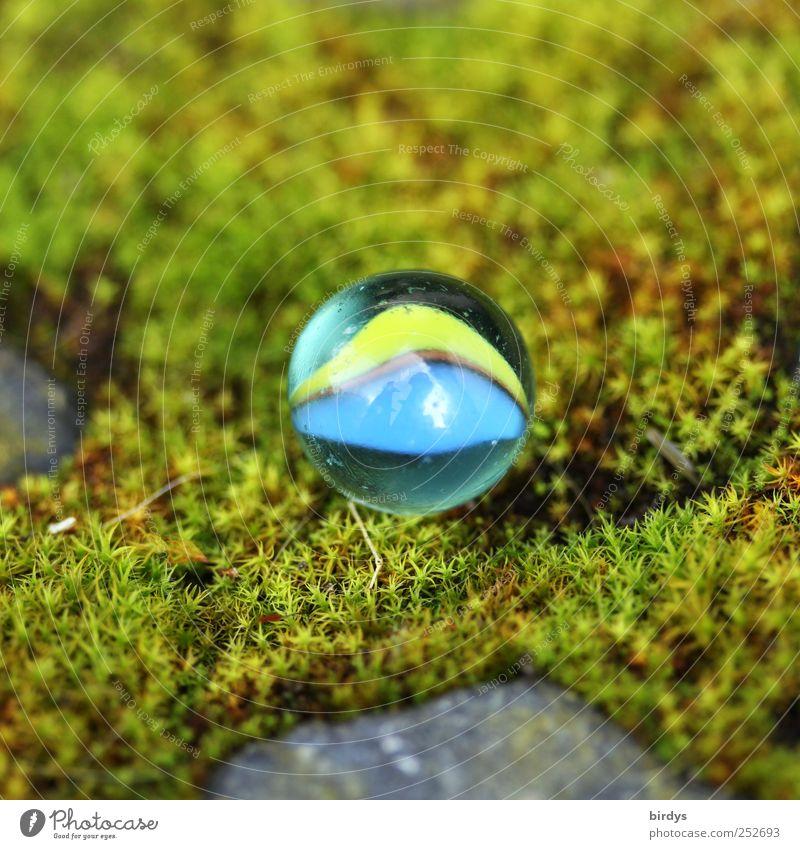 Kleine Murmel ganz groß Natur blau grün schön Sommer Freude gelb Kindheit Glas rund weich leuchten Moos Kinderspiel Glaskugel