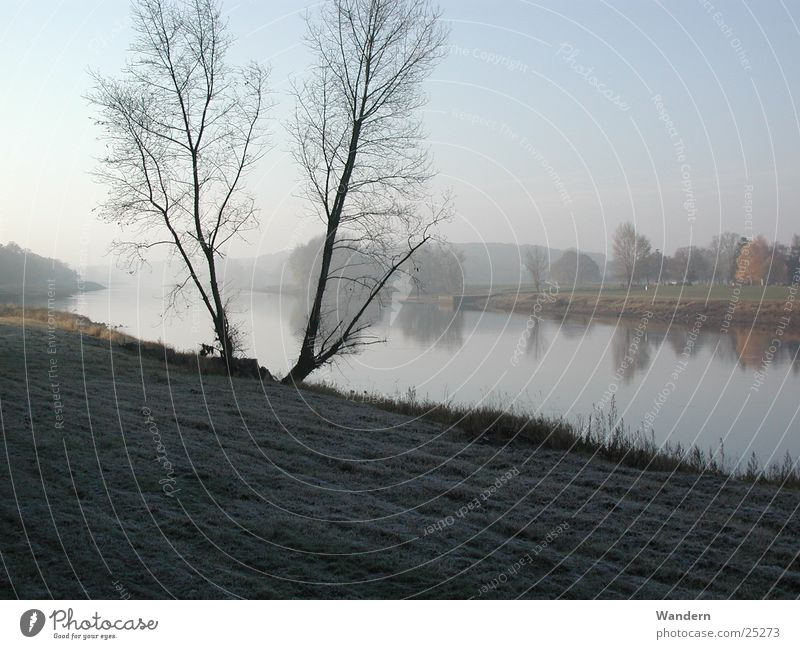 Elbe im Herbst Natur Nebel Sachsen