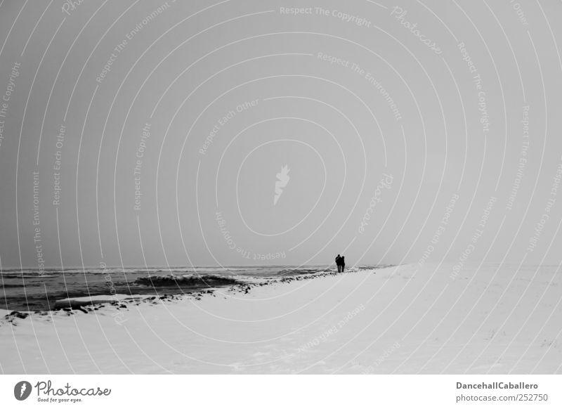 Winterspaziergang Mensch Himmel Natur weiß Ferien & Urlaub & Reisen Einsamkeit schwarz Ferne Schnee Wege & Pfade grau Küste Traurigkeit Zusammensein Nebel