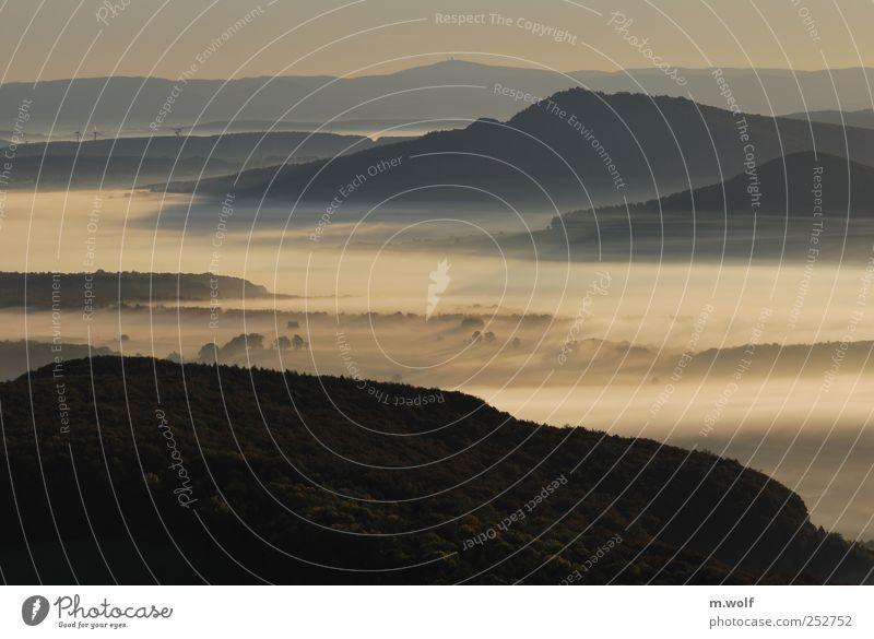Lichtblick Umwelt Natur Landschaft Sonnenaufgang Sonnenuntergang Sonnenlicht Herbst Nebel Wald Hügel Berge u. Gebirge Rhön Mittelgebirge einzigartig Idylle