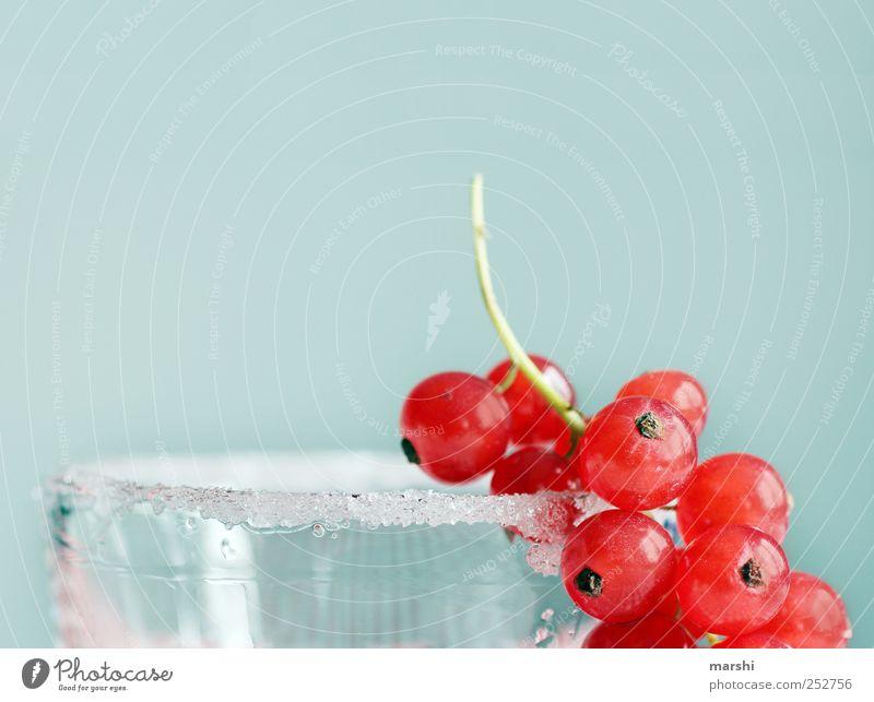 Zucker für die Bären Lebensmittel Frucht Ernährung Saft Glas süß blau rot Zuckerrand Johannisbeeren Beeren Dekoration & Verzierung lecker Farbfoto Innenaufnahme