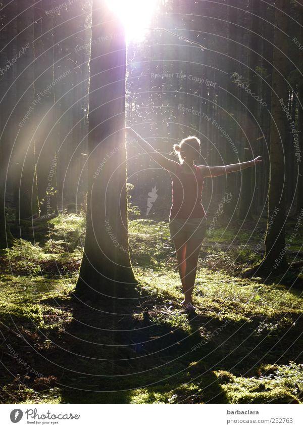Sonnenstaub fangen Frau Mensch Natur Jugendliche grün Freude schwarz Wald feminin dunkel Erwachsene Glück Stimmung hell Tanzen blond