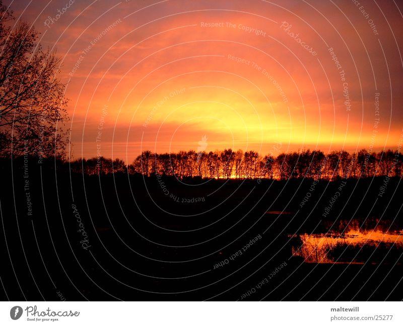Sonnenuntergang Wasser Wald See Romantik