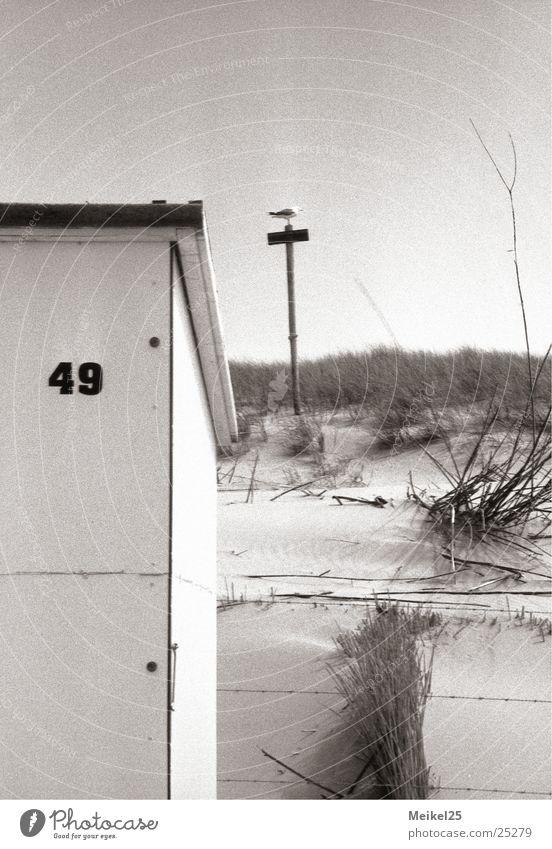 Strandhäuschen Strandhaus Niederlande Duplex Ferien & Urlaub & Reisen Meer Vogel Außenaufnahme Europa Schwarzweißfoto uralub Himmel Sonne Stranddüne Sand