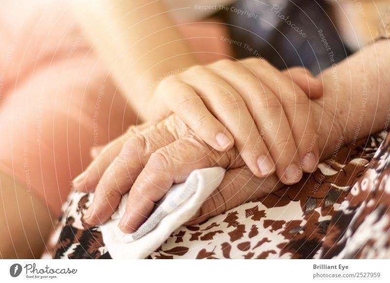 Trost spenden Sommer Mensch Junge Weiblicher Senior Frau Familie & Verwandtschaft Hand Finger 2 13-18 Jahre Jugendliche 60 und älter Natur berühren festhalten