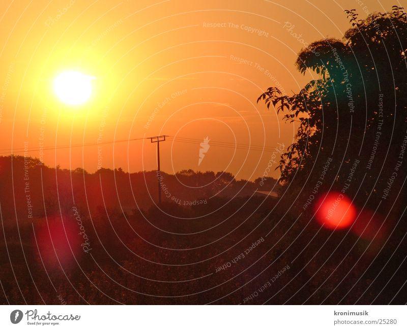 Der Morgen Sonne ruhig Wald Romantik