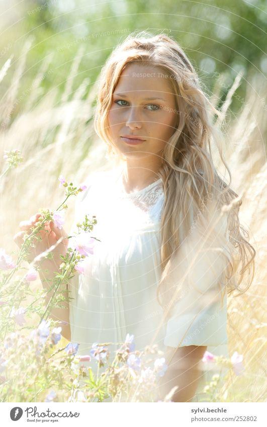 love me tender Mensch Natur Jugendliche schön Pflanze Blume Sommer ruhig feminin Leben Wiese Umwelt Gras Haare & Frisuren Erwachsene