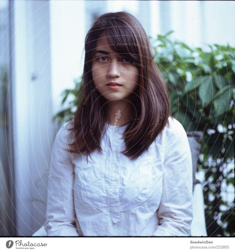 In Erwartung. Mensch feminin Junge Frau Jugendliche Erwachsene 1 18-30 Jahre Umwelt Natur Pflanze Blatt Grünpflanze Nutzpflanze Balkon Fenster authentisch schön