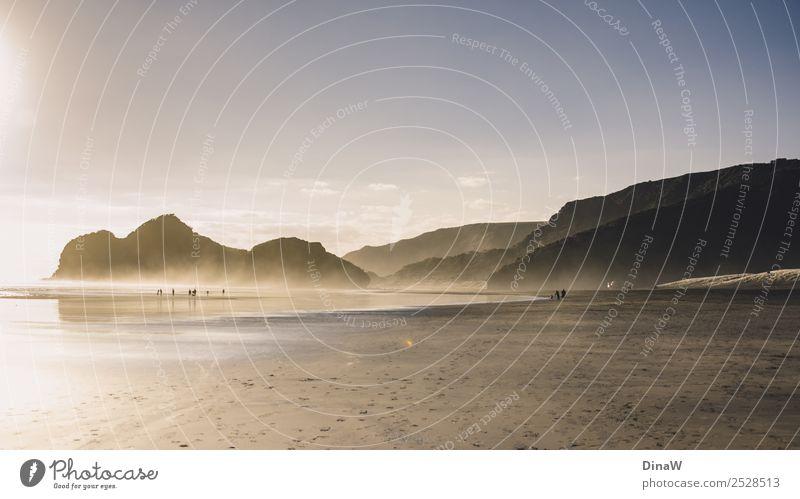 Bethells Beach Natur Landschaft Erde Sand Wasser Sonne Sonnenlicht Frühling Schönes Wetter Nebel Felsen Küste Strand Meer Auckland Neuseeland entdecken